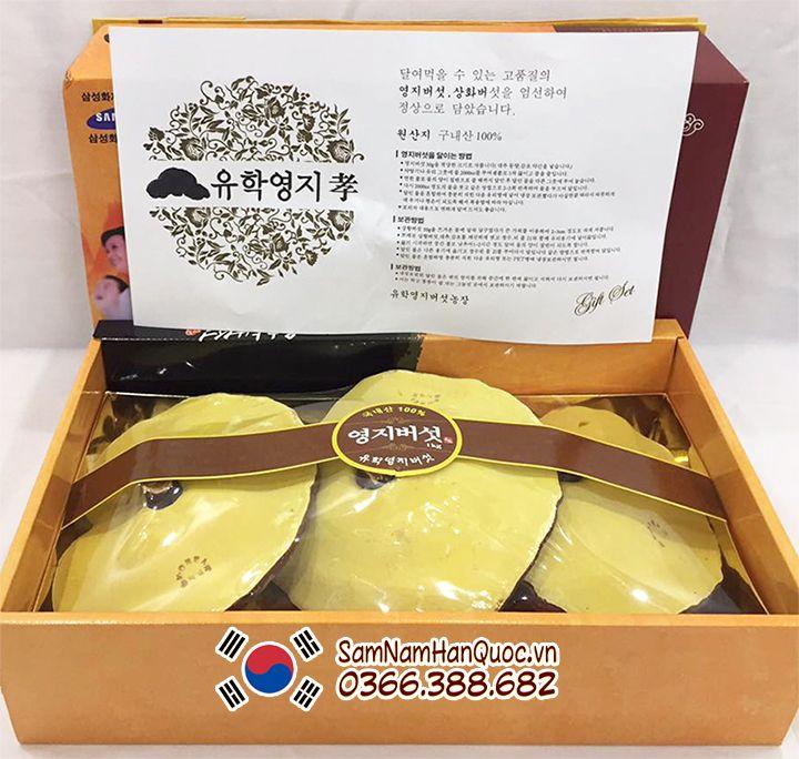 Bán nấm linh chi Uhak Hàn Quốc giá rẻ