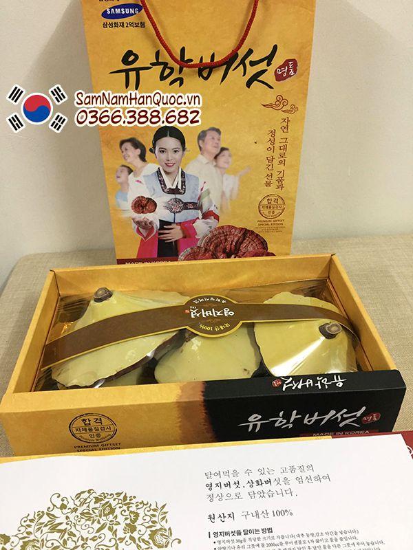 Địa điểm mua Nấm linh chi Uhak Hàn Quốc