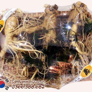 Nhân sâm tươi Hàn Quốc 3 củ 1kg 6 năm tuổi chính hãng giá rẻ