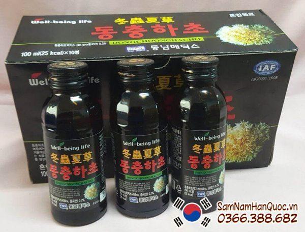 Nước uống đông trùng hạ thảo Hàn Quốc sảng khoái, bổ sung dinh dưỡng