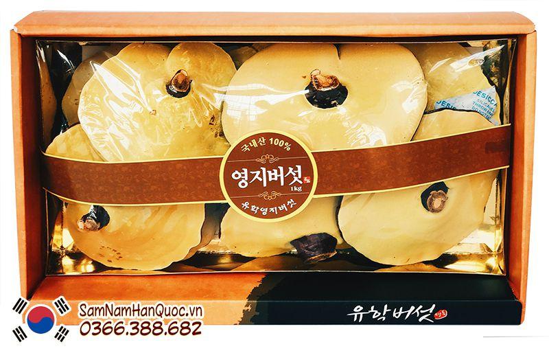 linh chi Uhak Hàn Quốc nhập khẩu