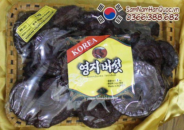 Nấm linh chi đỏ đóng khay Hàn Quốc chính hãng giá rẻ