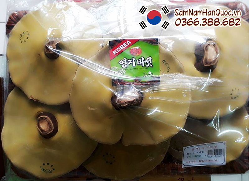 Nấm linh chi vàng đóng khay chính hãng Hàn Quốc giá rẻ