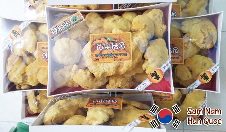Nấm Thượng Hoàng Hàn Quốc 365 hộp 500g chính hãng giá rẻ. Mua nấm linh chi thượng hoàng thương hiệu 365 hộp 500g, 1kg 100% Hàn Quốc giá rẻ