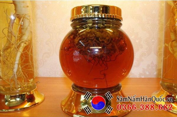 Cách chế biến đông trùng hạ thảo ngâm mật ong【Full】