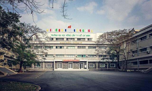 Nấm linh chi Nông Lâm là sản phẩm được phát triển bởi trường ĐH Nông Lâm TPHCM