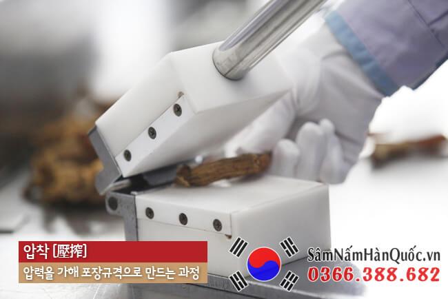 Tác dụng của Thiên sâm Hàn Quốc