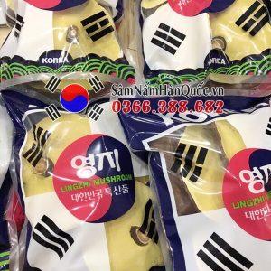 Nấm linh chi đỏ túi lá cờ Hàn Quốc cao cấp chính hãng giá rẻ